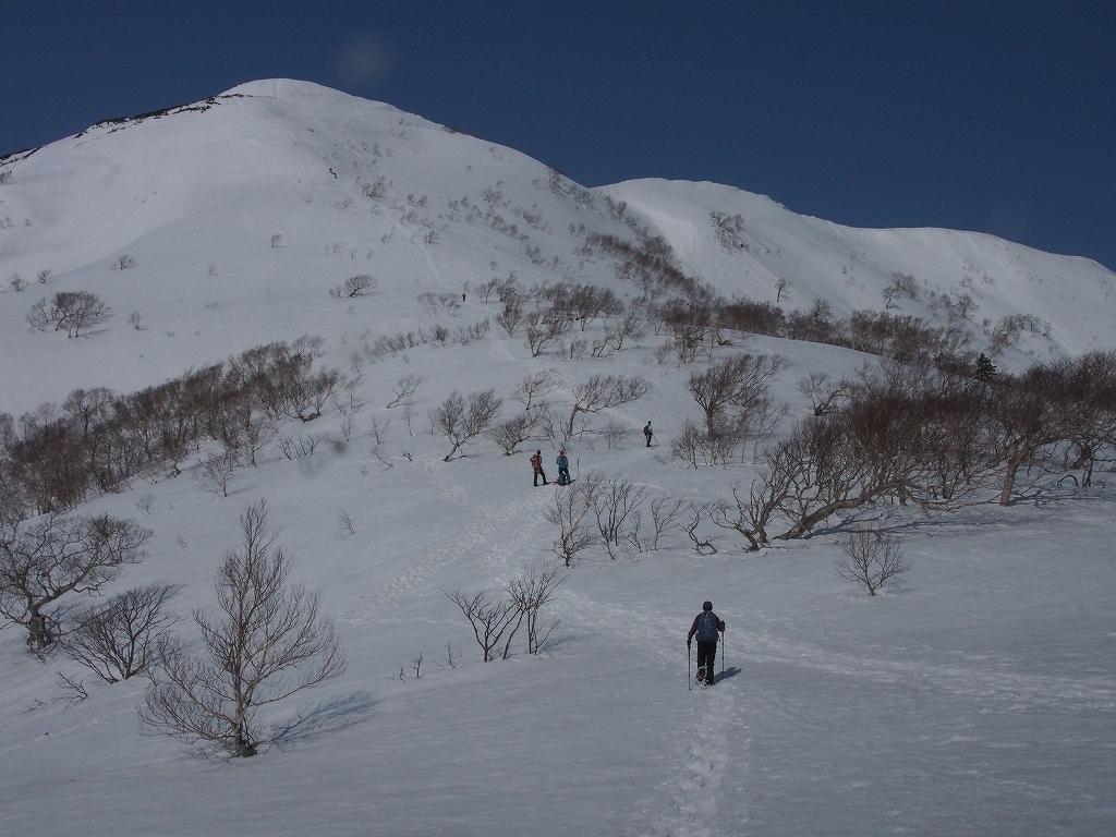 漁岳、3月29日-速報版-_f0138096_166431.jpg