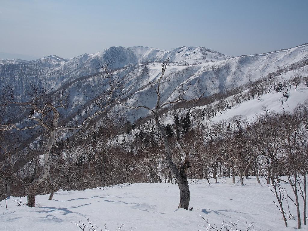 漁岳、3月29日-速報版-_f0138096_1672215.jpg