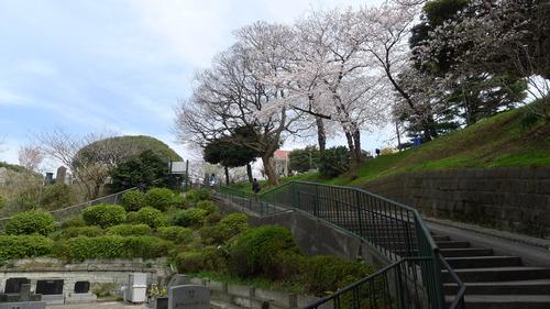 横浜 山手の景観_b0074416_0371324.jpg