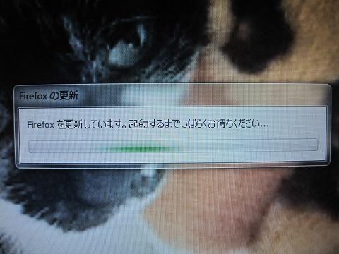 a0087146_10173293.jpg