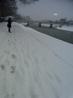 雪の金沢_c0192970_16184757.jpg