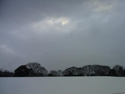 雪の金沢2_c0192970_16462288.jpg