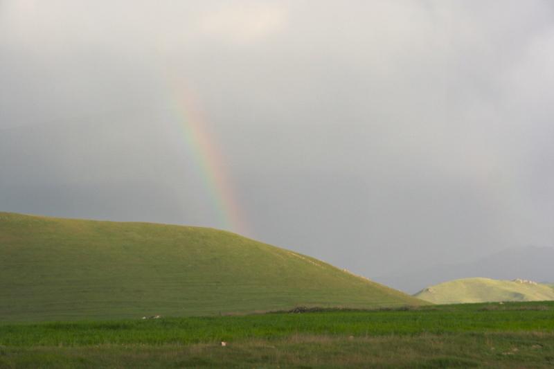 虹を抜けたら夏だった_d0133581_17144334.jpg