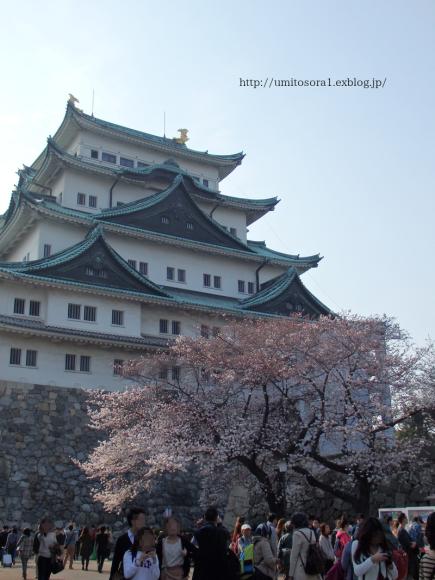 名古屋城の桜祭りに行ってきました♪_b0324291_16403536.png