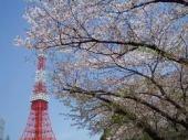 公園を探して_f0322193_13581000.jpg