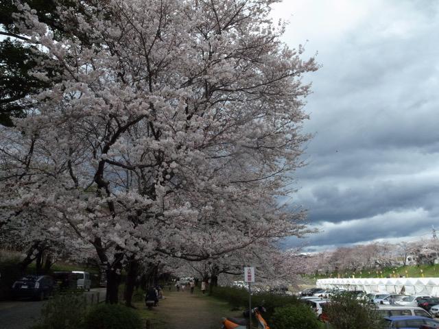 散歩@岡山市内_f0197703_1119327.jpg