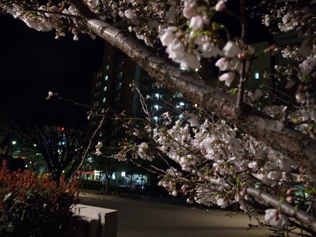 散歩@岡山市内_f0197703_11235952.jpg