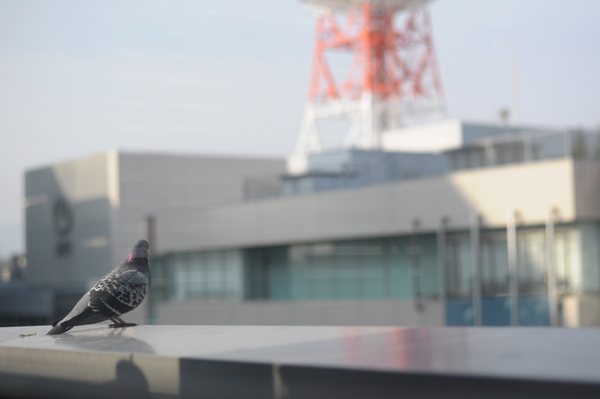 一番乗り【中野】_f0035333_2316661.jpg