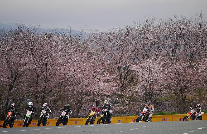 桜舞うモタードスクール_f0178858_20351428.jpg