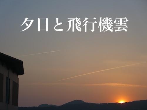 秋田_c0000970_1758599.jpg
