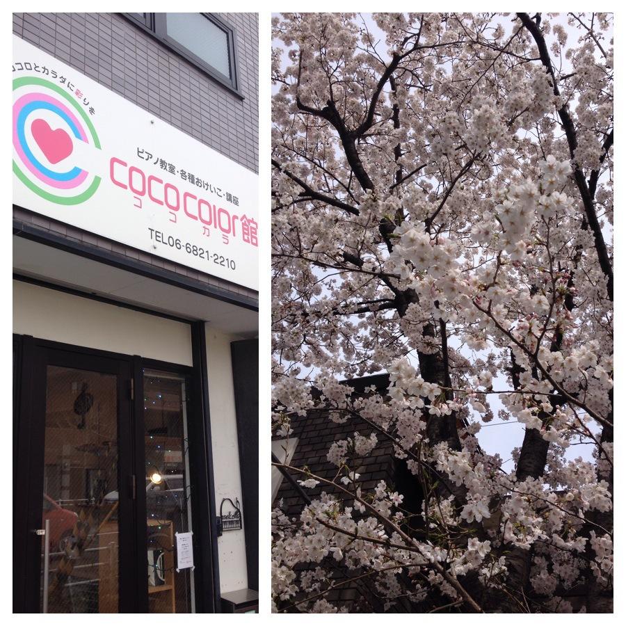 春です!桜も満開^^ココカラ館もますます元気^^_f0180576_13582779.jpg
