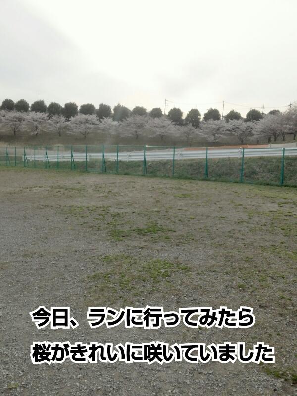 f0230380_22345595.jpg
