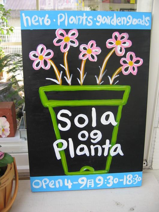 sola og planta 2014年、オープンします!_a0292194_215557100.jpg