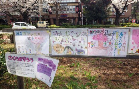 国立の桜🌸_b0203925_20355017.jpg