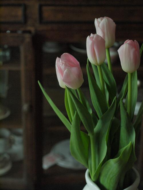 春_e0172847_8212164.jpg