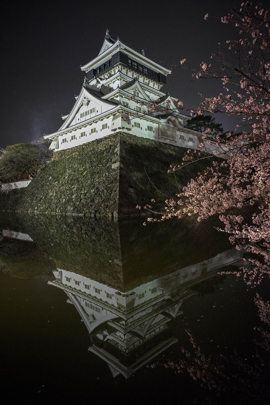 小倉城の夜桜写真がテレビで紹介されました。_c0028861_23125517.jpg