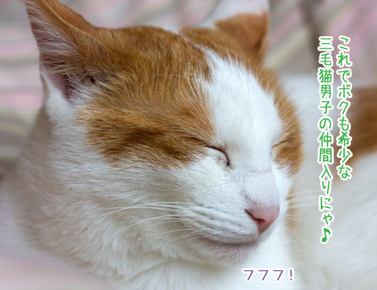 a0119470_18472365.jpg