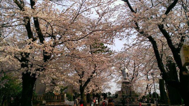 春爛漫_e0172872_23305172.jpg