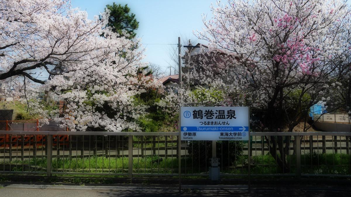桜の季節…2_e0139093_10292553.jpg