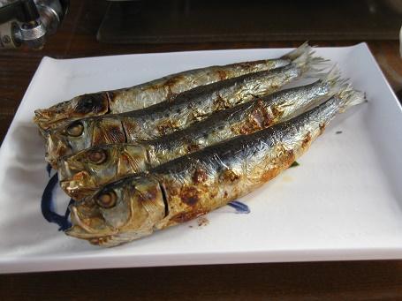 ★鰯料理を食べに九十九里浜★_e0147297_17345567.jpg