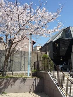 4/2 第8回テキスタイル展 締め切り間近!_e0189606_14233984.jpg