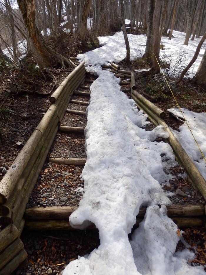 残雪の大山へ_f0219710_6534537.jpg