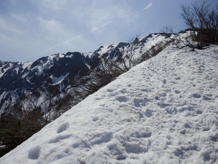 残雪の大山へ_f0219710_6591720.jpg