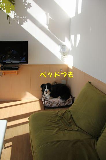 d0224111_20034285.jpg