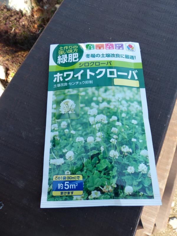 赤松のクローバ畑_a0288621_11363760.jpg