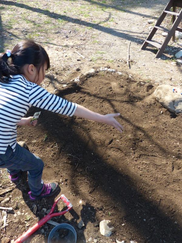 赤松のクローバ畑_a0288621_12203921.jpg