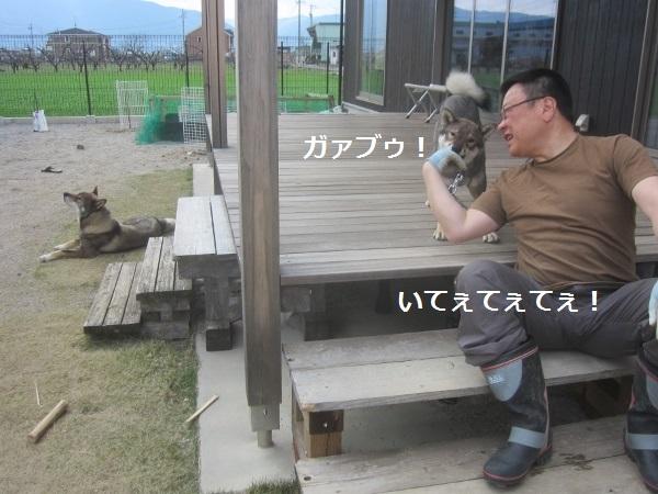 f0143123_20215942.jpg