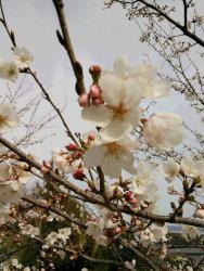 萩原ブログ 一人旅♪_e0176128_16472895.jpg