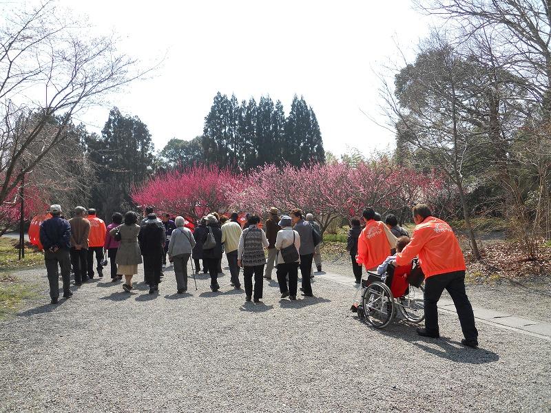 春のバス旅行_c0113948_1524269.jpg