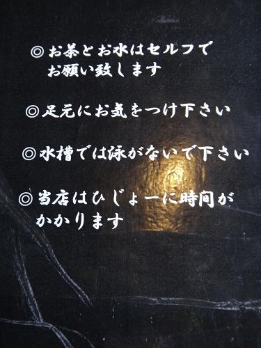 b0123359_1719879.jpg