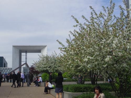 ラデファンスの花いっぱいの春_e0123104_13451373.jpg