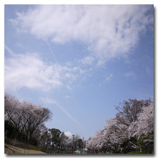 #2623 ある春の日_e0175405_654993.jpg
