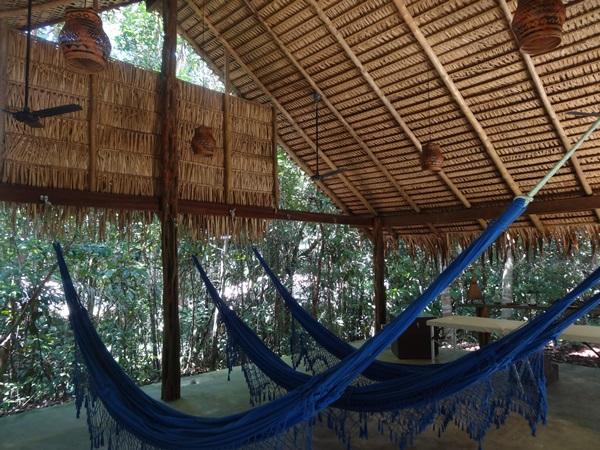 Anavilhanas Jungle Lodge(マナウス,ブラジル)_e0182138_7291571.jpg