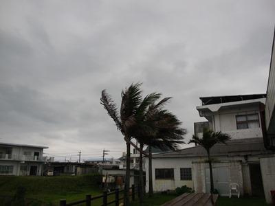 4月3日 曇り空です_b0158746_21201646.jpg