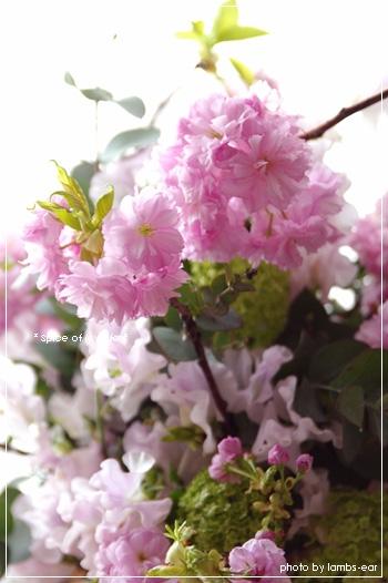 f0151946_22532537.jpg