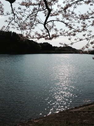 3・9・10周年記念の春***_e0290872_13584939.jpg