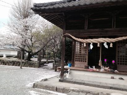 3・9・10周年記念の春***_e0290872_2152366.jpg