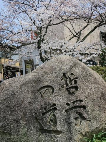 そうよ、京都に行こう!!!_d0046025_0223142.jpg