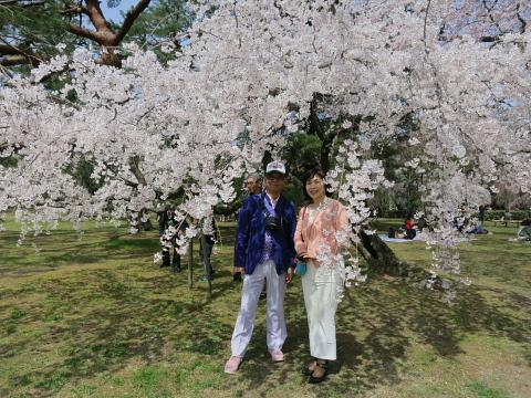 そうよ、京都に行こう!!!_d0046025_0301285.jpg