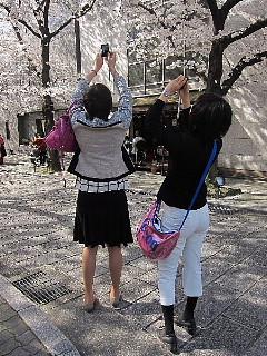 そうよ、京都に行こう!!!_d0046025_211422.jpg
