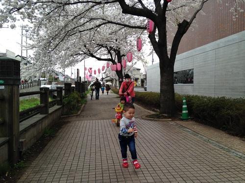 お花見散歩_a0267942_12203791.jpg