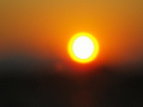 太陽と金柑。_b0207642_1891382.jpg