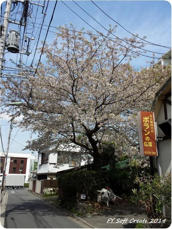 ◆ 桜咲く多摩川土手へ (2014年4月)_d0316868_9232247.jpg