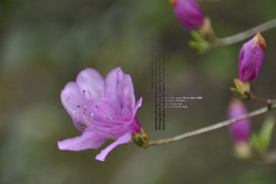 f0198771_23543919.jpg