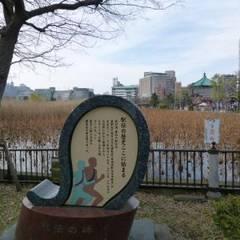 公園を探して_f0322193_15484976.jpg