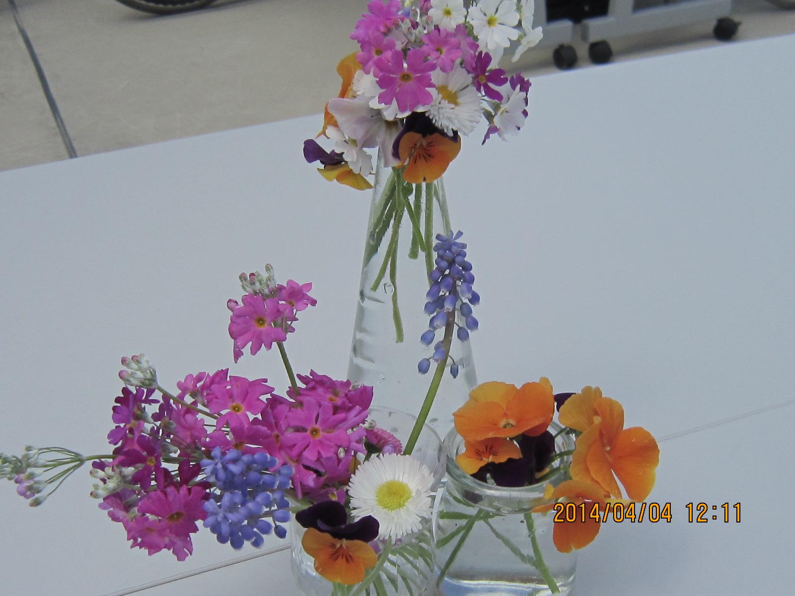 春のお花見弁当_a0158095_1413915.jpg